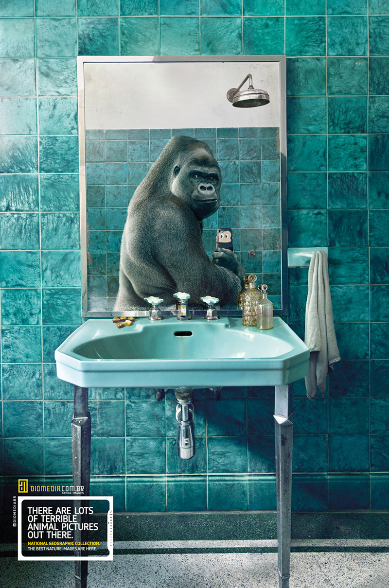 National Geographic Selfie 2