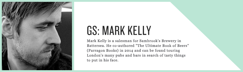 Mark Kelly - guest panel