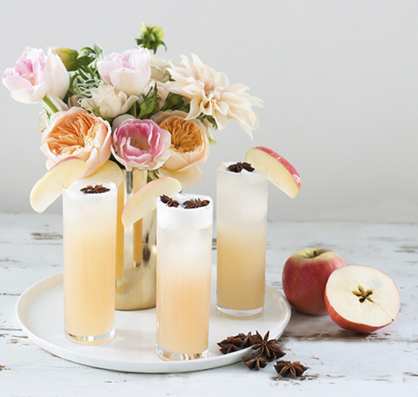 TWOPTipples_apple-brandy-allspice-fizz-cocktail1