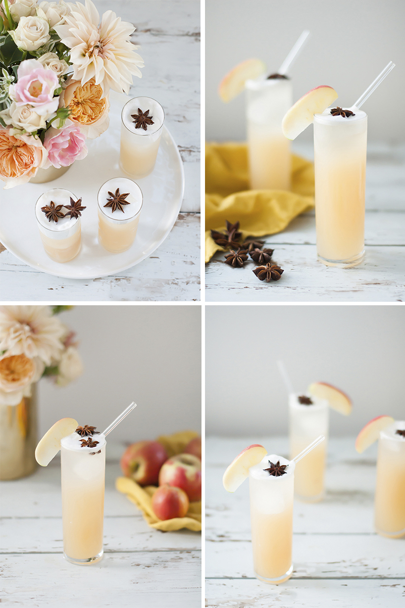 TWOPTipples_apple-brandy-allspice-fizz-cocktail2